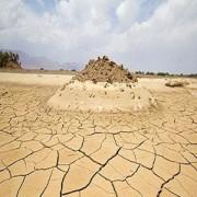اقلیم گرم و خشک